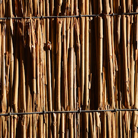 Vertical Reeds background texture by Bryan Wenham-Baker - Abstract Patterns ( vertical, vertical canes, texture, textures, vertical screen, backgrounds, background, canes )