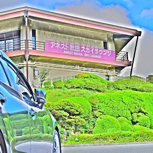 アクセラスポーツ(ハッチバック) BMLFS 1.5XD proactive 2016.11のカスタム事例画像 ★しゅん☆さんの2018年08月09日18:01の投稿