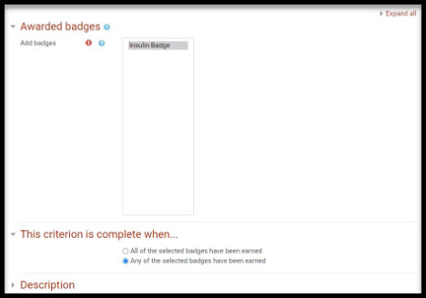 Screenshot of awarded badge options