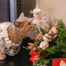 Wedding photographer Ekaterina Korshikova (Neulowimaya). Photo of 03.02.2016