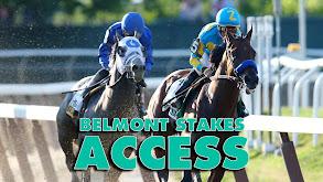 Belmont Stakes Access thumbnail