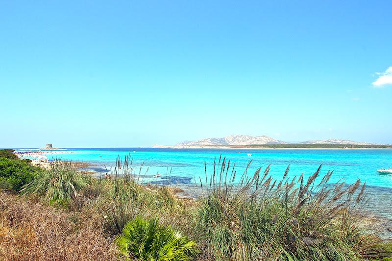 Saluti dalla Pelosa - Stintino, Sardegna di sergio71
