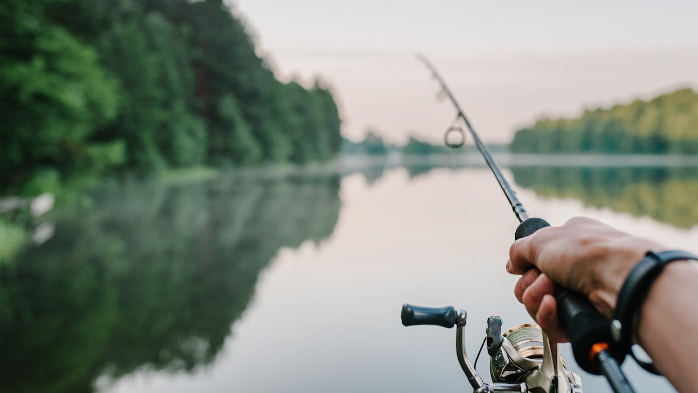 Watch The Ultimate Guide to Fly Fishing live