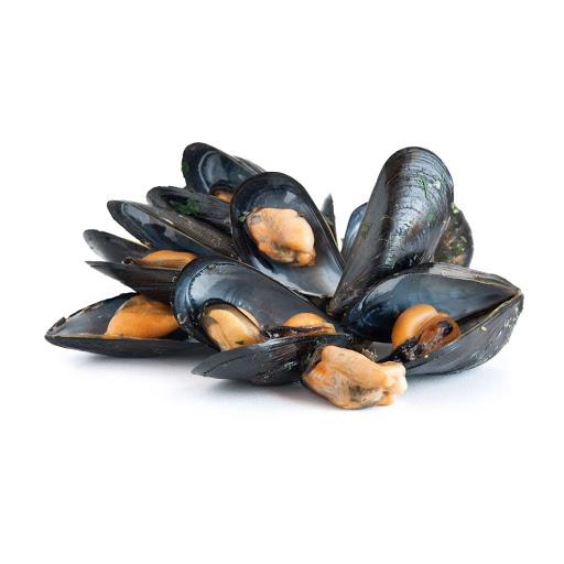 Shellfish Molluscs Cooked