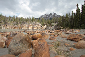 Photo: Jasper NP - Athabasca River