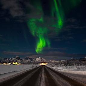 by Yvonne Reinholdtsen - Uncategorized All Uncategorized ( winter, snow, aurora borealis, road, norway,  )