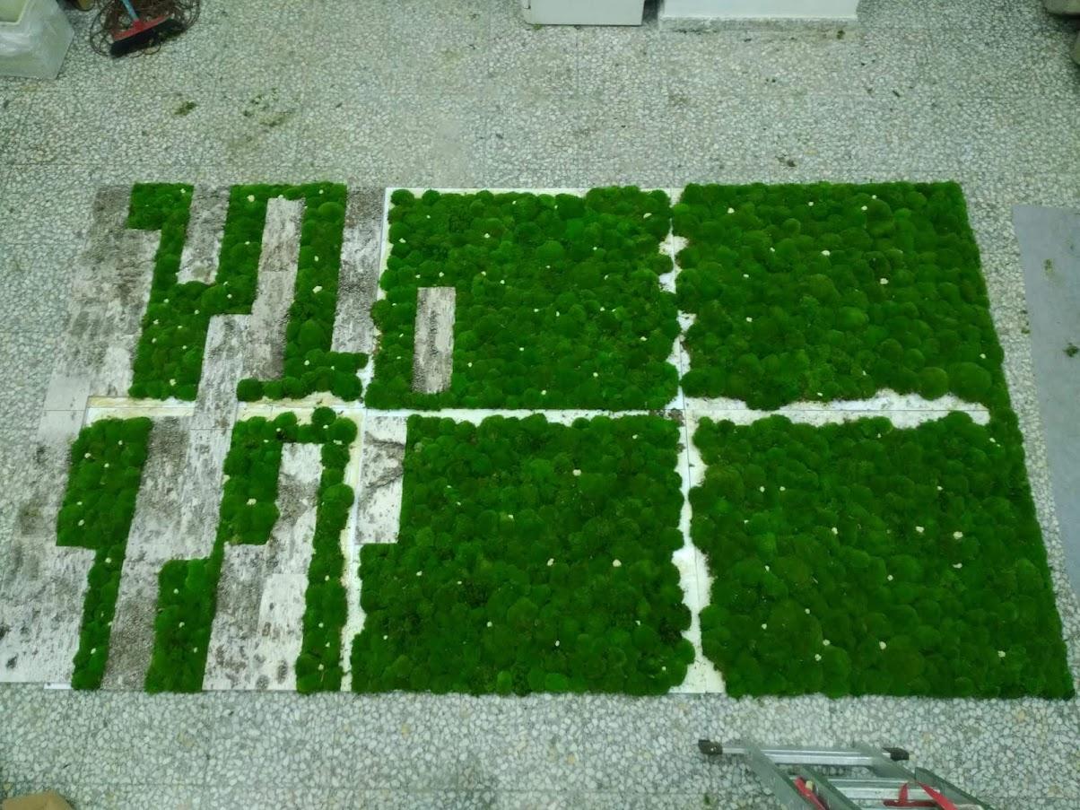 proceso de montaje del jardin vertical de planta conservada