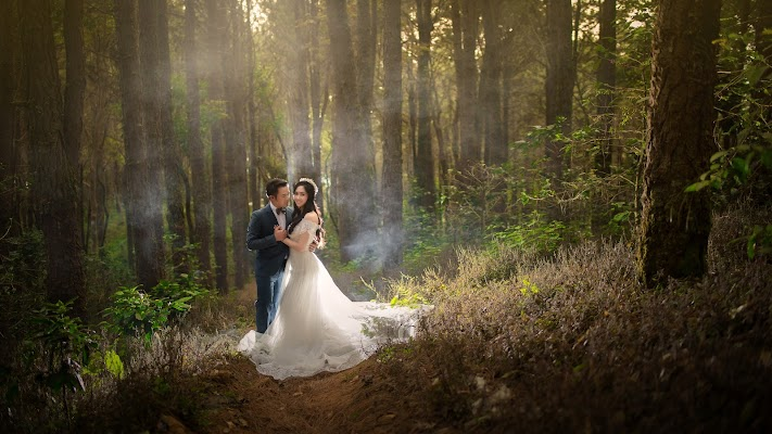 Wedding photographer Art Sopholwich (artsopholwich). Photo of 02.03.2018