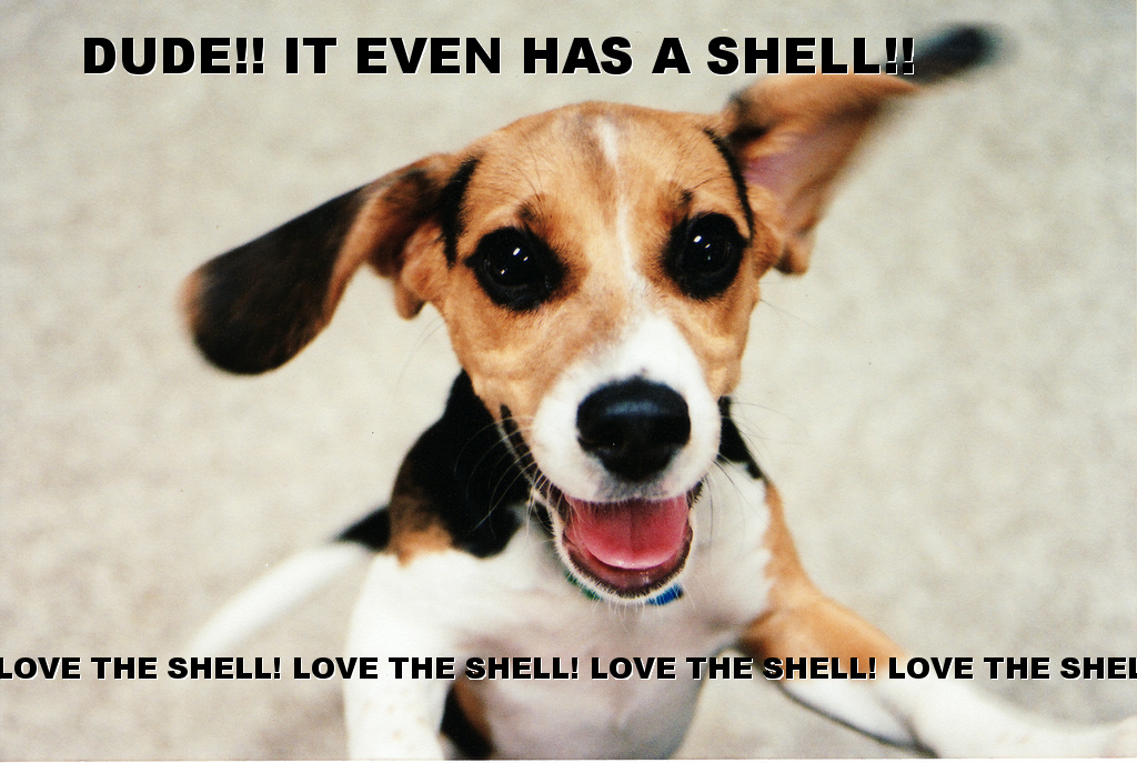 dog-excited-even_has_a_shell.jpg