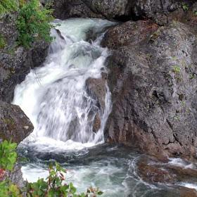 Красивый лесной водопад