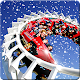 Fabulous Roller Coaster 2017 (game)
