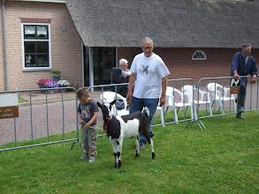 Photo: Rubriek 4: bonte lammeren geboren in 2012. 1a. Marjo P. van J. Poppelaars.
