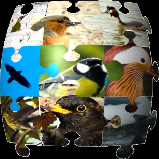 Ornithopedia North America