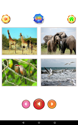Animal sounds 6.9 screenshots 15