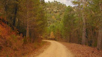 Photo: Camino de la Celada