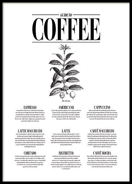 GUIDE TO COFFEE, POSTER
