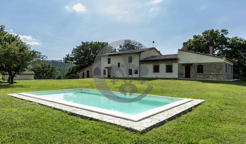 Farm house with garden and pool Sarteano