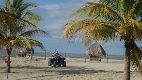 Saving on the Spacious Sands of La Ceiba, Honduras thumbnail