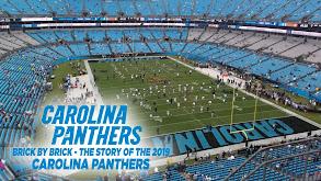 Carolina Panthers: Brick by Brick - The Story of the 2019 Carolina Panthers thumbnail