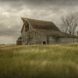 She Stands by Michele Richter - Buildings & Architecture Decaying & Abandoned ( mrichterphotos )