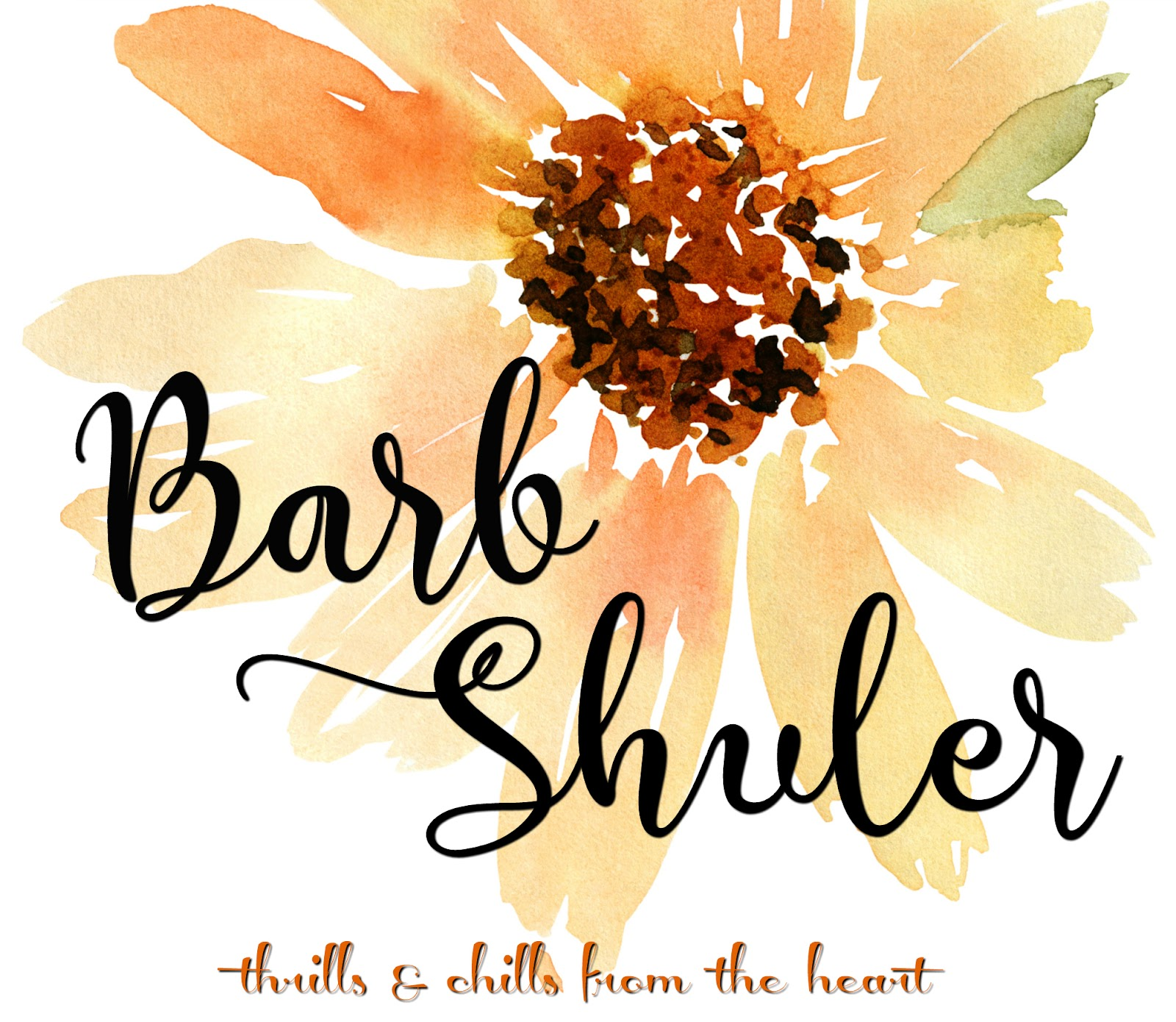Barb's Logo Banner2.png