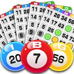 Bingo 2.3.29