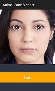photo face blender