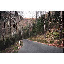 Manali 1 by Pranab Sarkar - Transportation Roads ( beautiful, mountains, trip, road, india )