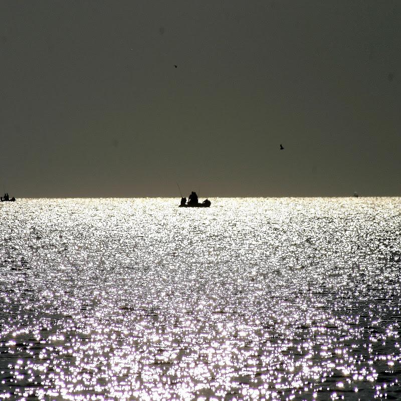 Pescatori all'alba di fabio pelosi
