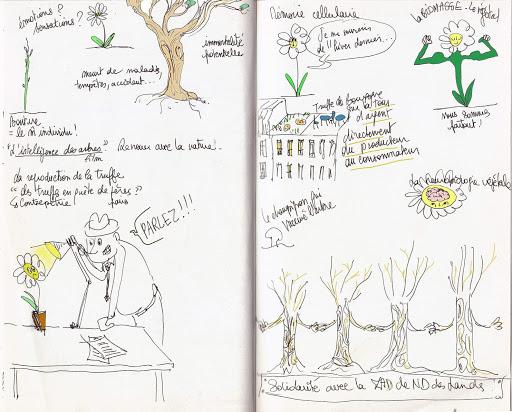 Prise de notes visuelle Les arbres parlent aux arbres 2