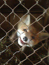 Photo: I'm hungry!