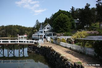 Photo: (Year 2) Day 334 - Roche Harbor #3