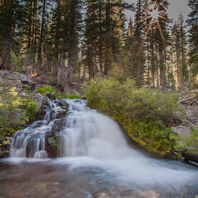 Small Falls on Kings Creek by Mike Lee - Landscapes Waterscapes ( green, moving water, waterscape, lassen national park, sunburst, waterfall, cascade, falling sater, kings creek,  )