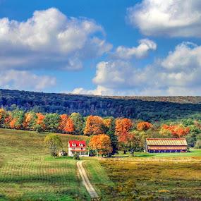 Fall farm by Pamela Hammer - Landscapes Mountains & Hills ( farm, mountain, nature, fall, landscape,  )