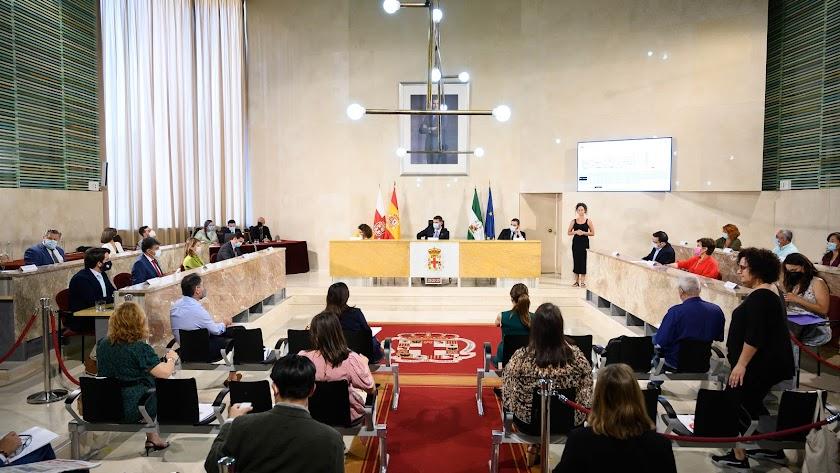 Regreso de los plenos presenciales al Ayuntamiento de Almería