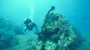 Los fondos marinos de Cabo de Gata son bellísimos.