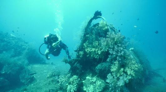 Actividades acuáticas para descubrir el litoral