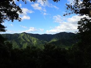 254mピークから姫越山(右)を望む