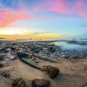 Jelutong Fishermen Wharf (Dove Jetty)  by Ah Wei (Lung Wei) - Landscapes Sunsets & Sunrises ( shore, samyang, clouds, fisheye, sunrises, seashore, george town, penang bridge, penang island, malaysia, dove jetty, frontground, seascape, landscape, panorama, samyang 12mm f2.8, samyang 12mm f/2.8 ed as ncs fisheye, george town penang, jelutong fishermen wharf, pulau pinang, jelutong expressway, penang, defish, sunrise, panoramic )