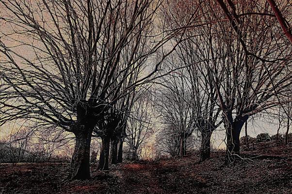 Come d'autunno si levan le foglie l'una appresso de l'altra fin che il ramo vede a la terra tutte le sue spoglie. di paolo1954