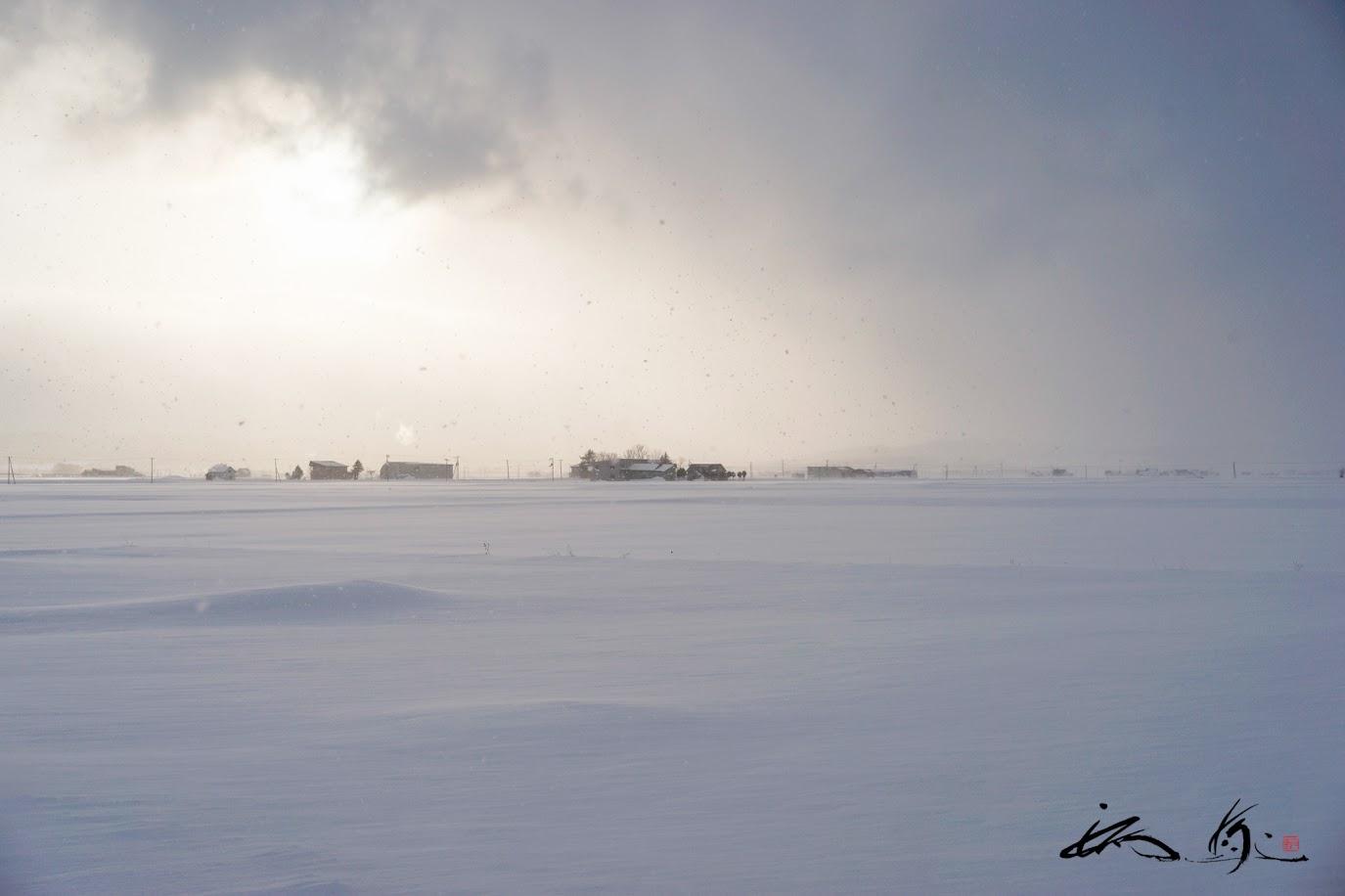 息をひそめる冬ごもりの季節。。。
