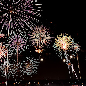 Happy July 4th! by Andrea Silies - Public Holidays July 4th ( fireworks,  )