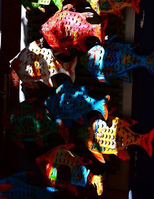 Pesci e ombre di francesca_vigolo