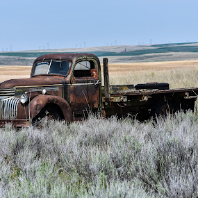 Chevy Flatbed Truck by Terry Oviatt - Transportation Automobiles