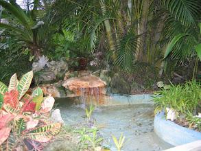 Photo: Yoga Retreat, Bahamas - pond