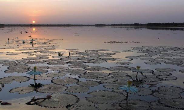Lake Tengrela
