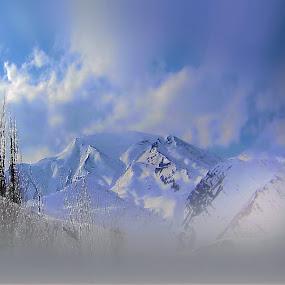 Alborz Mounts by Fereshteh Molavi - Landscapes Mountains & Hills ( sky, mounts, snow, trees, cloud )