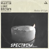 Shadow & Light (Spectrum Remix)