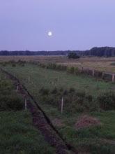 Photo: Lever de Lune à Orlovka