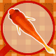 Scooping Goldfish (Festival) Android apk
